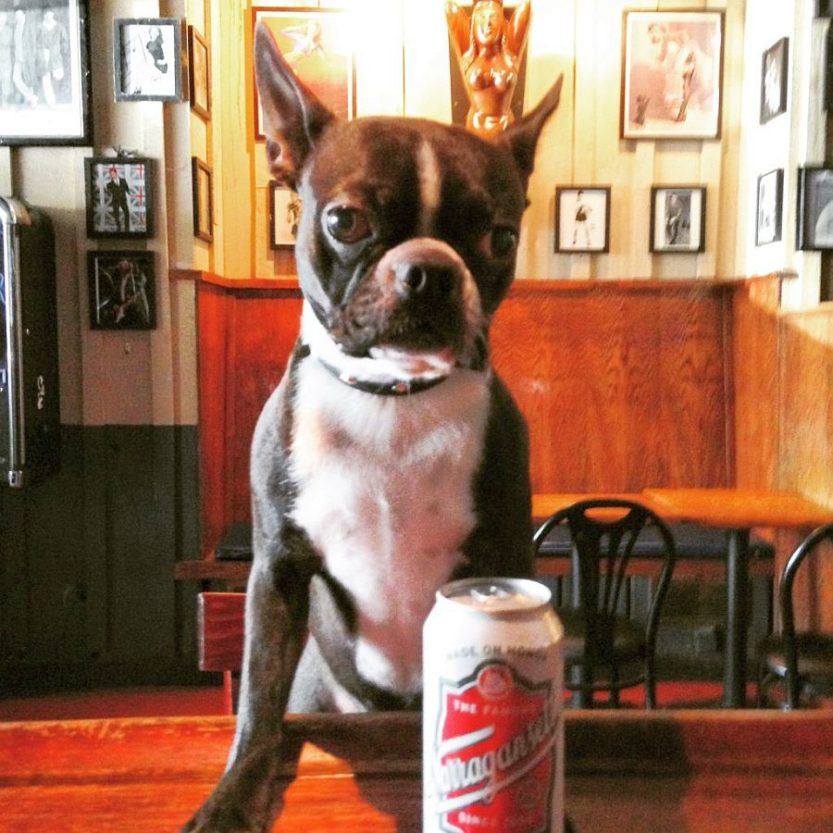 at the pub with a frosty one