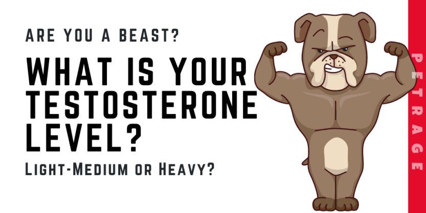 what is your testosterone level quiz petrage (1)
