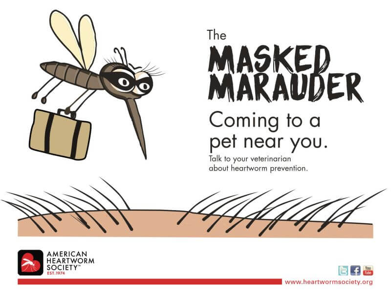 12 common dog diseasses The_Risk_Is-Real_Poster_maskedmaruader