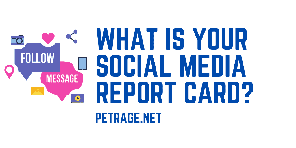 what is your social media report card quiz petrage