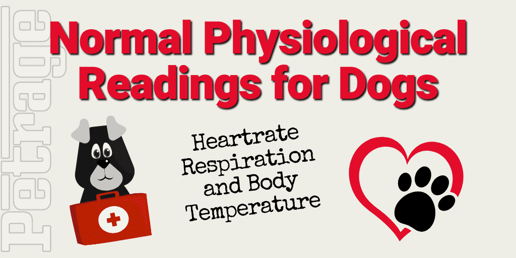 Normal Physiological Readings for Dogs petrage
