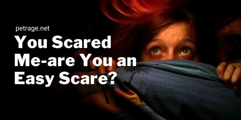 you scared me are you an easy scare quiz petrage
